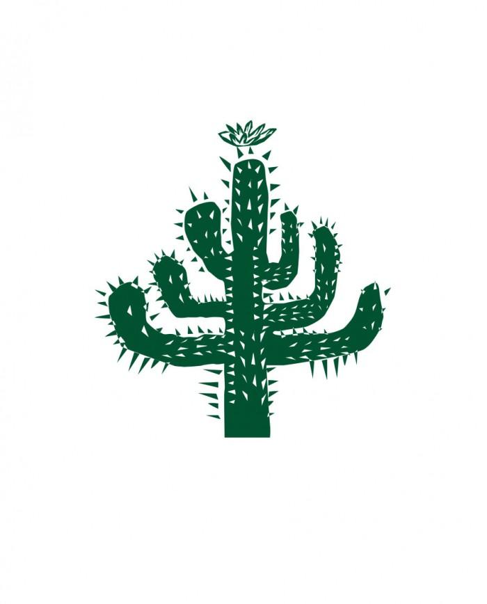 Sacola Eco Mandacaru